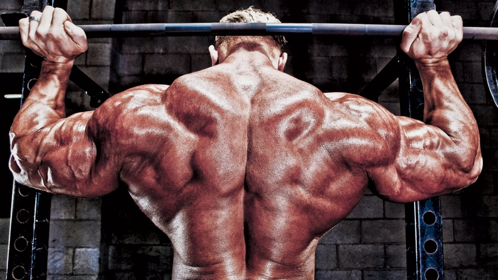 Dennis Wolf's Guide to Wide Shoulders | FLEX Online