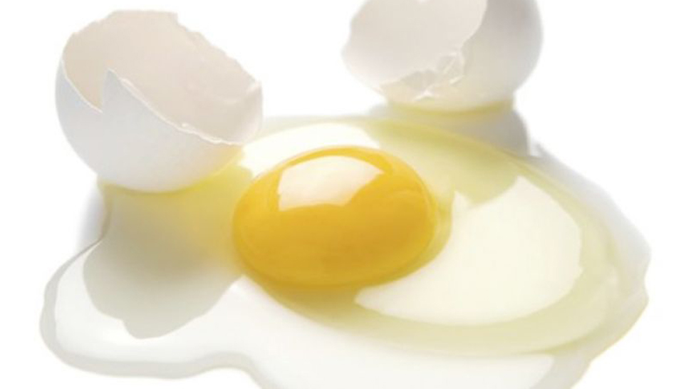egg white - photo #3