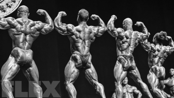 The 2015 Arnold Classic Brasil
