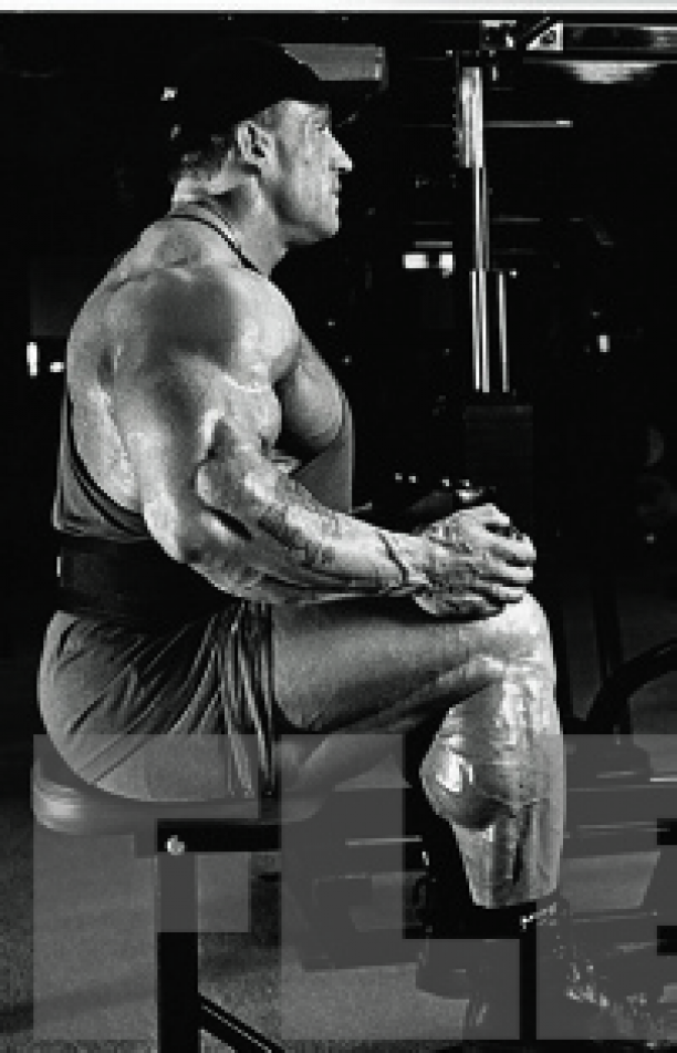 how to get big calves everything is terrible