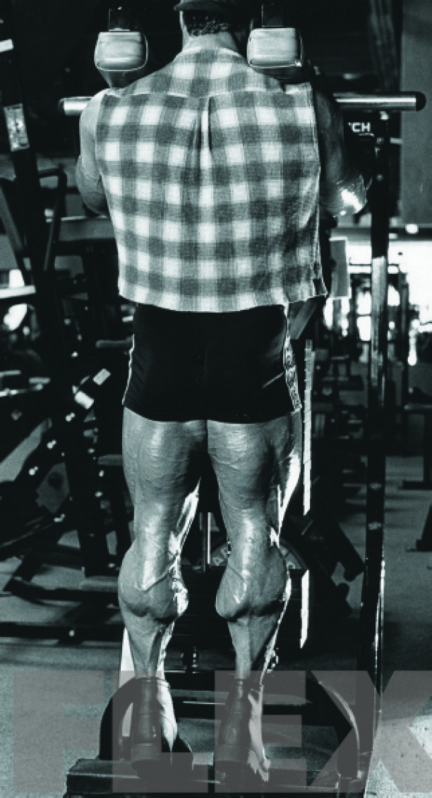 "How Mike ""The Boston Mass"" Matarazzo Turned His Calves ..."