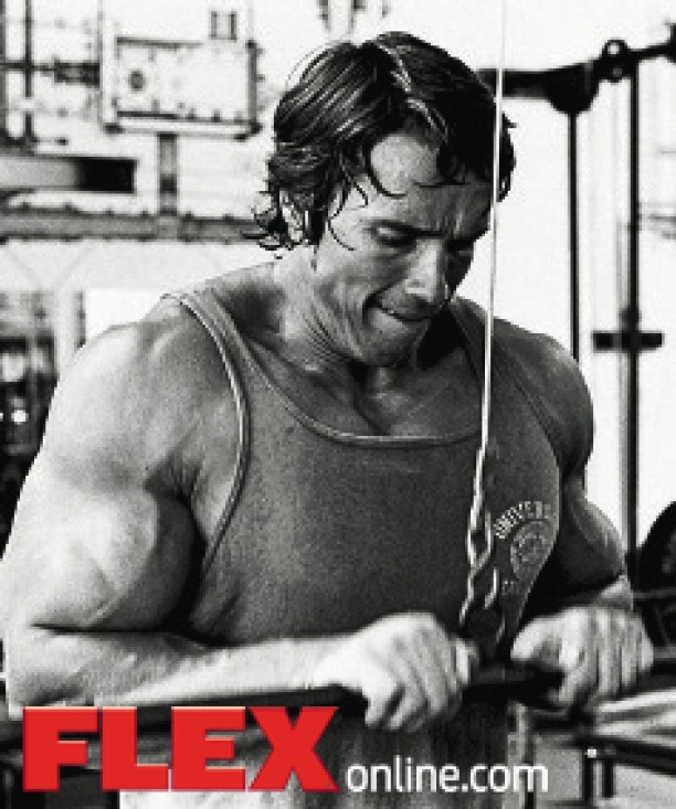 The Complete Arnold: Triceps | FLEX Online