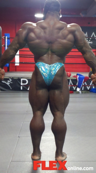 Mr.Olympia 2011 Kai_back1